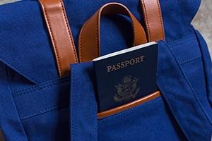 Gaston Luga - Clässic Passport Pocket