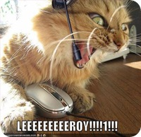 lolcats-funny-pictures-leroy-jenkins