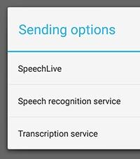 Transcription Options